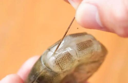 锡纸花甲-爆炒海鲜酱-青岛大丰食品