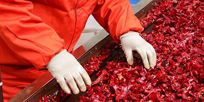 甜椒粉价格-青岛大丰食品