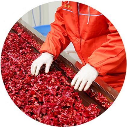 辣椒酱代加工厂家-青岛大丰食品